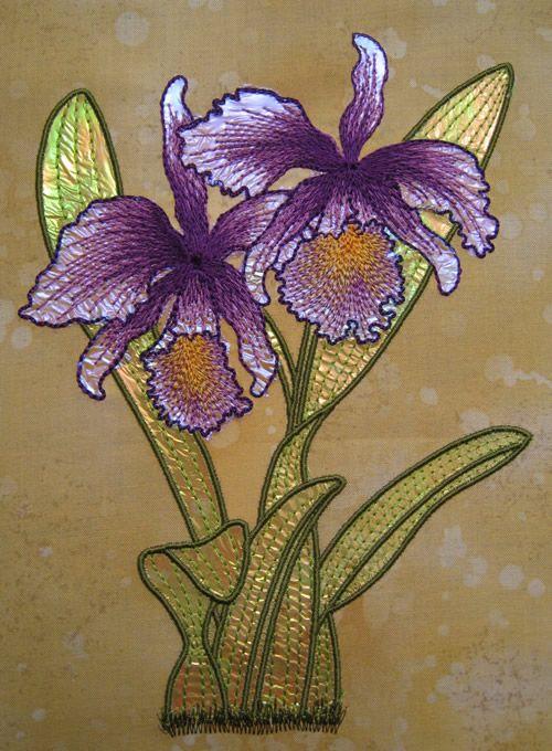 Mylarorchid